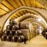 Marsala Wineries Excursion - Oasi Favignana Village