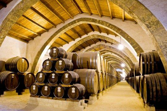 Marsala Wineries Excursion - Oasi Favignana Village
