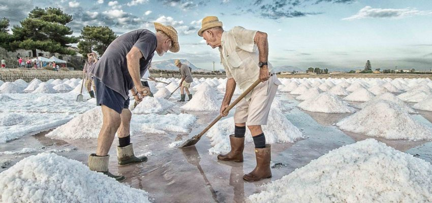 Excursion to Trapani salt flats - Oasi Favignana Village